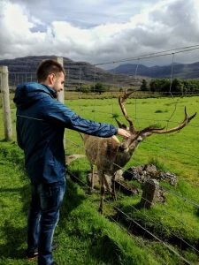 A boy caresses a deer in the natural reserve in Torridon fdjord, Scotland