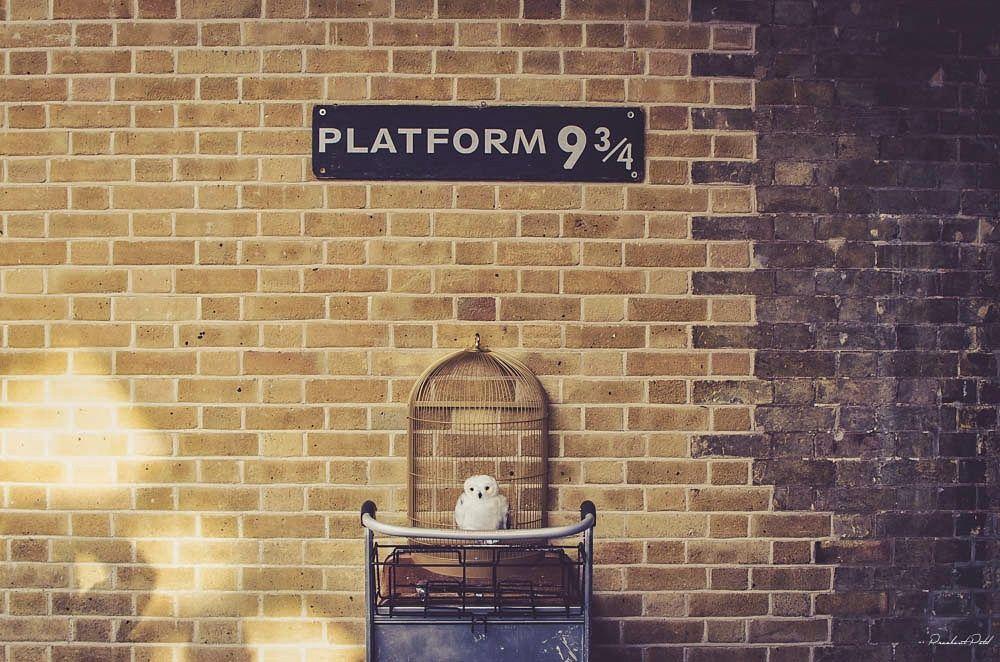 Il carrello incastrato nel muro al binario 9 e 3/4 con targhetta nella stazione di King's Cross a Londra.