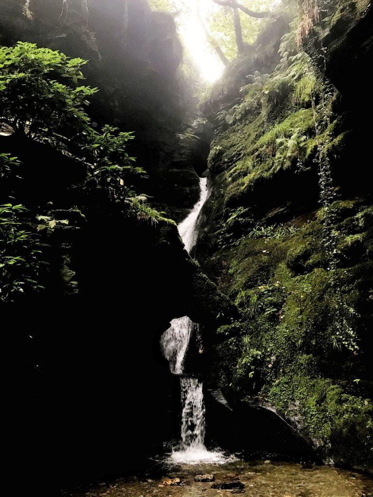 Una cascata scene dalla fenditura tra le rocce ricoperto di muschio verde e di rami.