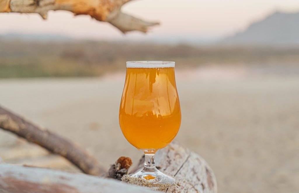 Esperienze di viaggio per gli amanti della birra