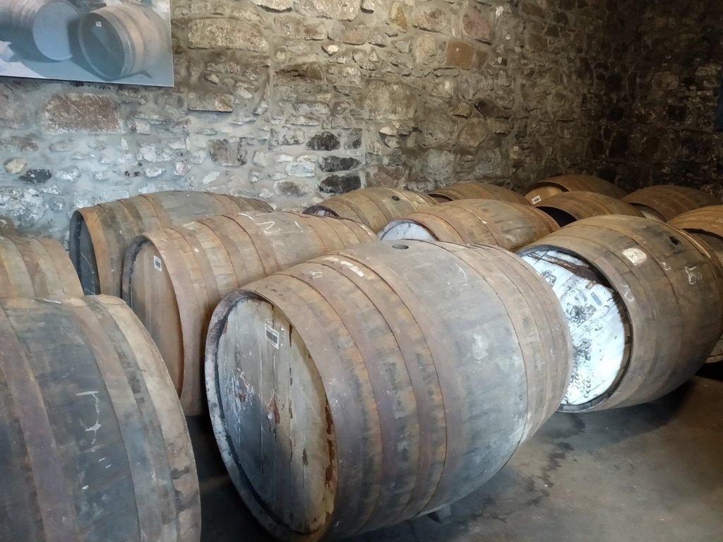 Botti in legno contenenti whisky