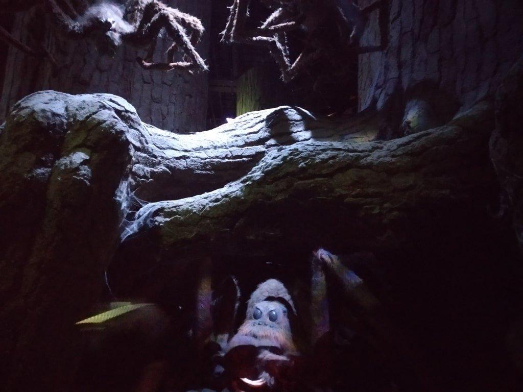 Aragog sotto un tronco della foresta proibita ai Warner Bros Studio Tour - The Making of Harry Potter a Londra