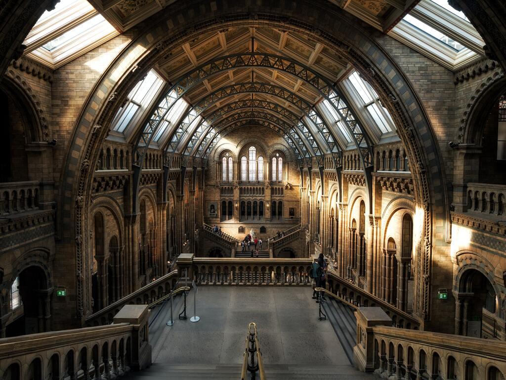 La sala principale del National History Museum a Londra