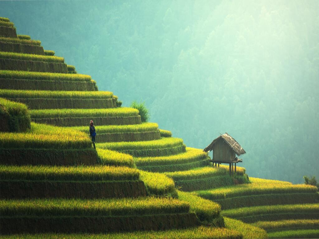 Una piccola capanna in legno tra le colline terrazzate cinesi