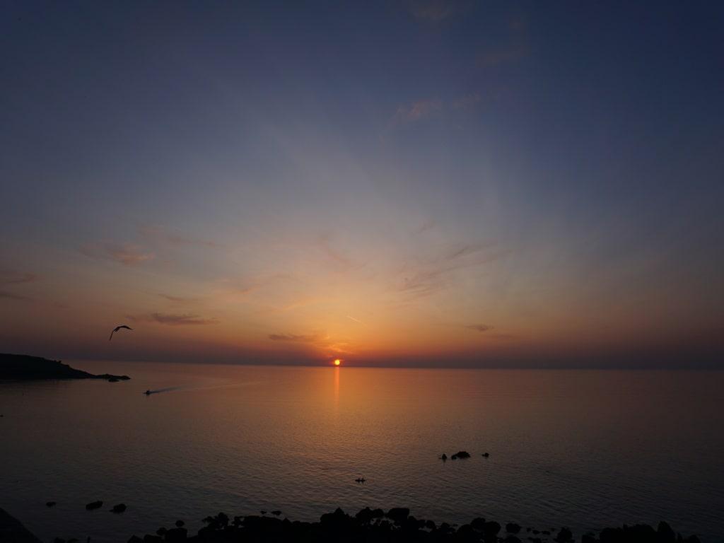 Un tramonto rosa sul mare, con il sole a pelo dell'oceano.